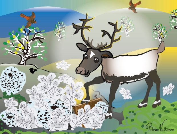 Paavo the Reindeer